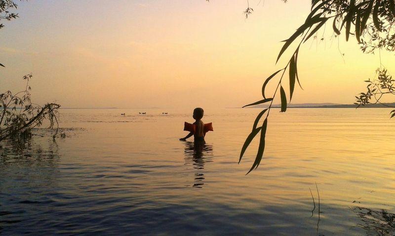 Balaton Lake Balaton Lake Beach Child Childhood Swim Summer Summertime Water Nature Sunset Landscape Chill Peace Peaceful