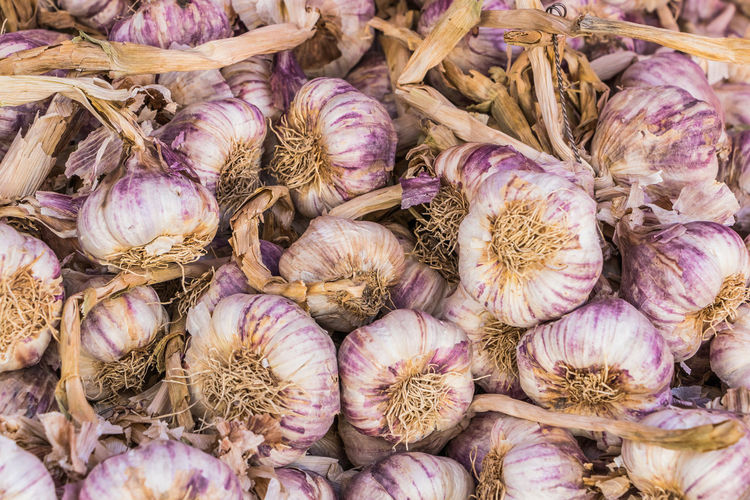 natural light Garlic Aglio Backgrounds Bulbi Di Aglio Close-up Eleonora Cacciari Food Food And Drink For Sale Freshness Fruit And Vegetables Frutta E Verdura Garlic Garlic Bulb Healthy Eating Ingredient Large Group Of Objects Market Mercato Retail  Still Life Vegetable Wellbeing