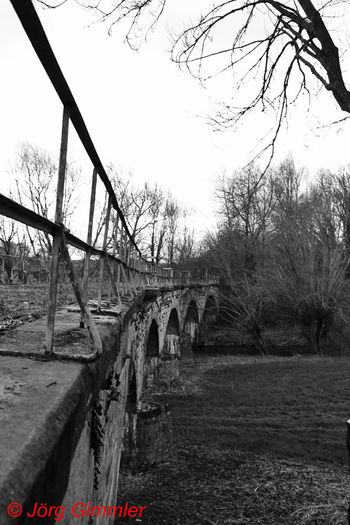Canon Canonphotography Canon_photos Canon Eos  Canon 18-55 Bw Black And White Blackandwhite B/W Photography B/w Tree Water Bridge - Man Made Structure River Sky Architecture Built Structure Railway Bridge Railroad Bridge Railroad Track