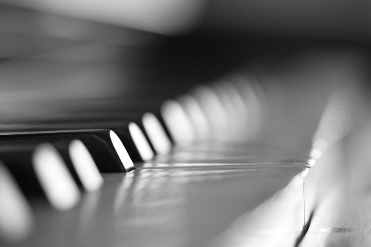 Autumn Mood Musical Equipment Music Selective Focus Musical Instrument Close-up Indoors  Piano Arts Culture And Entertainment Piano Key No People Pattern In A Row String String Instrument Day Detail Still Life Musical Instrument String Full Frame Reflection Keyboard Instrument Blackandwhite Music Klavier My Best Photo