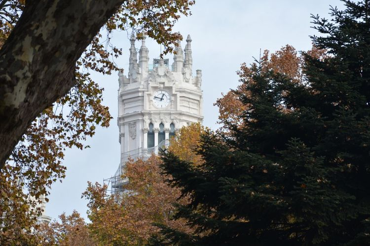 Cityscape City View  Perspective Tree Park Sky Madrid SPAIN Travel Destinations Travel Stories No People Outdoor Photography Tree Architecture Travel Destinations Low Angle View History No People Politics And Government Day Sky Outdoors City Nature