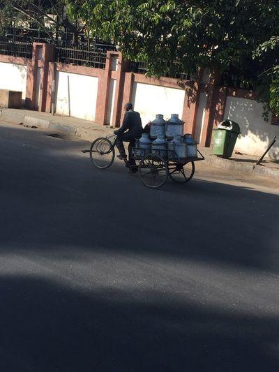 Milkman in Jaipur Transportation Bicycle Land Vehicle Mode Of Transportation Shadow Sunlight Day