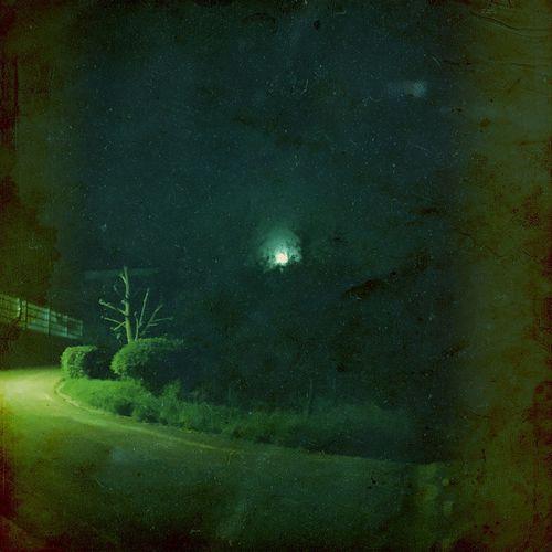 Night Outdoors Nature Moon Trees Mysterious NIGHT LIGHTNING Industry