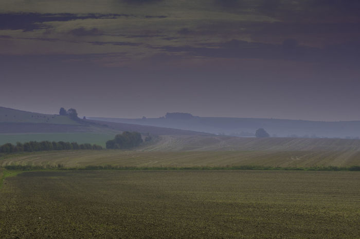 Contry Living Contryside Corn Field Fieldscape Fresh Air Harvest Harvest Time Hedge Hill Landscape Mist Morning Purple Purple Sky