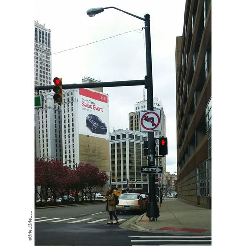 Downtown Street Lights Buildings Red Light Stop Pedestrian One Way Cars Parked Cars Photography Trees Nature