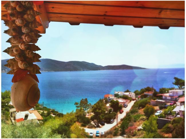 Greece Salamina Summer Shells🐚 Sea Trees Nature Mountains