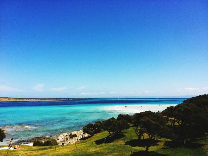 Cleaning my soul Nature Sardegna Stintino Sea View