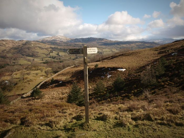 Showing me the way Sign Post Direction Winter Blue Sky Wide Open Spaces Moorland Hill Hillside Snowdonia Wales Walking Around Tree Valley EyeEm Selects Mountain Sky Landscape Cloud - Sky Directional Sign Arrow Sign Arrow Symbol Countryside The Great Outdoors - 2018 EyeEm Awards