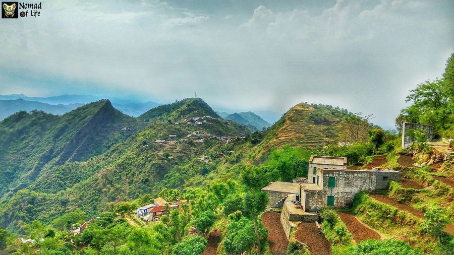 A closer view of the terrace farms... Mountain Outdoors Nature No People Landscape Agriculture Tree Terraced Field Day Beauty In Nature Sky Growth Mountain Range Rural Scene Water Beauty In Nature Field Agriculture Nature Outlined Photography Travel Destinations Mountains And Sky Green Color Picoftheday Mountain Peak