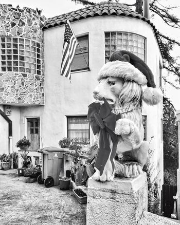 Black & White Black And White Black And White Photography Blackandwhite California City Cityscape Monochrome San Francisco SF Snapseed Urban