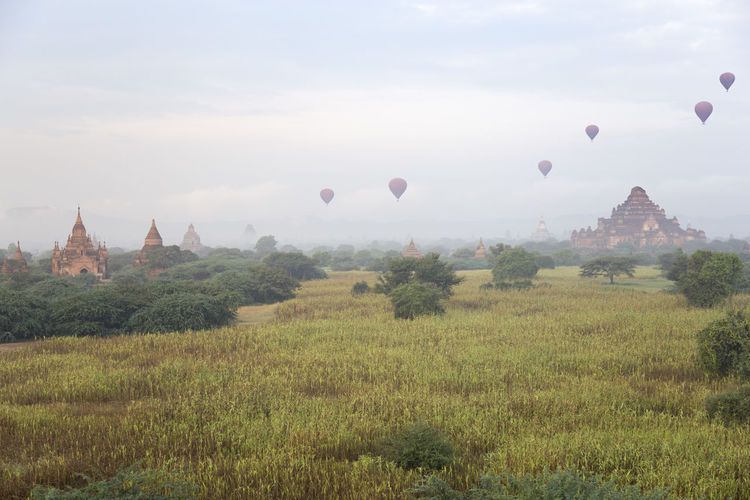 View of hot air balloons against sky