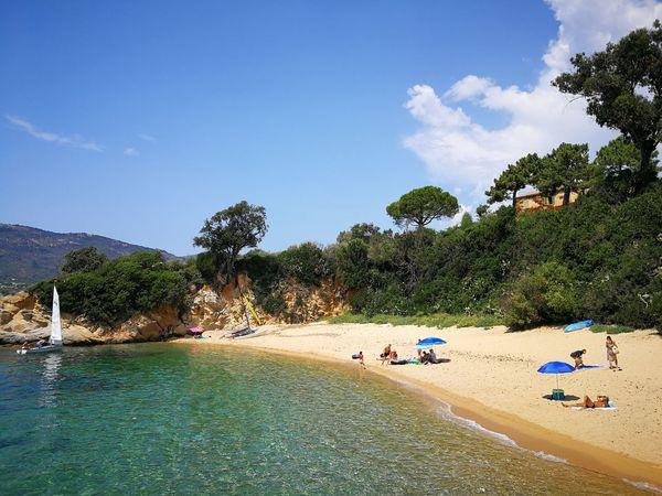 Life's a beach Korsika Sagone Corse Corsica Nature Travel Reisen Urlaub Landscape Beach Life's A Beach Mittelmeer Tree Water Beach Sand Sky Cloud - Sky