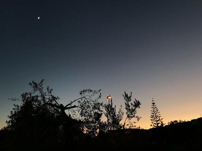 Night before