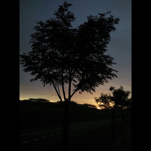 Masih sunset lagi, lagi sunset terus, tetap sunset mulu, ku suka sunset banget. 😄😄 Latepost Sunset Sky Instalike Instaphoto Instagallery Akusukasunset Likeforlike Ontheroad Nofilter Alhamdulillah Semogakausuka MyFavorite
