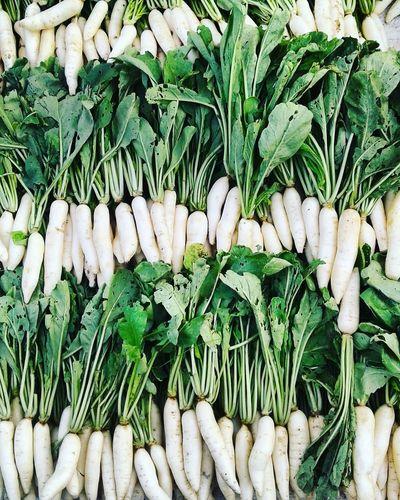 White Radish In Market Linear Perspective Algorithm Make Your Frame Vegetable Images