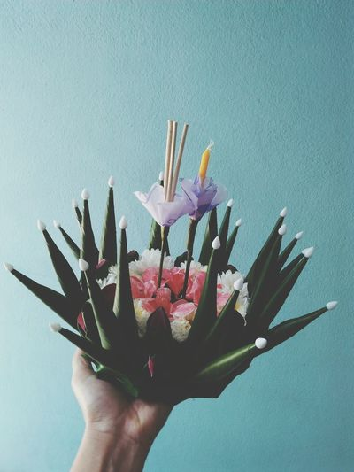 Close-up of hand holding artificial flower against blue wall
