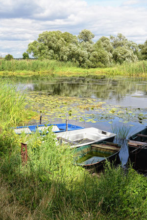 Havel river at summer time (Brandenburg, Germany). boats on shore Beauty In Nature Boat Boats Brandenburg Day Grass Green Color Growth Havel Havelland Havelland Germany Idyllic Nature No People Non-urban Scene Outdoors Plant River River View Rowing Boat Scenics Sky Tranquil Scene Tranquility Tree