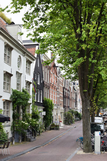 Amsterdam narrow street Amsterdam Green City Netherlands Architecture Building Building Exterior Built Structure City Cobblestone Day Direction Europe Nature No People Outdoors Plant Residential District Road Row House Street The Way Forward Transportation Travel Destinations Tree Wallpaper