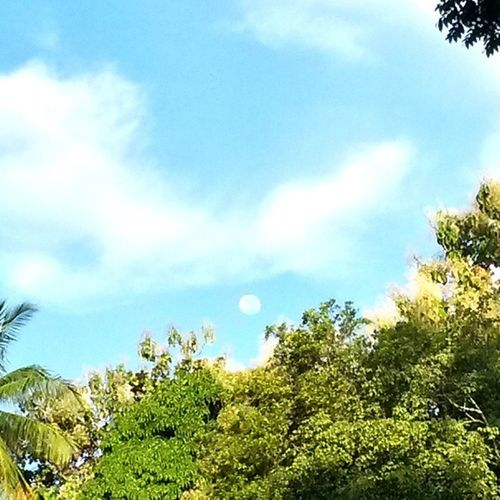 Starting... ☆ Sky Clouds Sun & Moon naturelovers