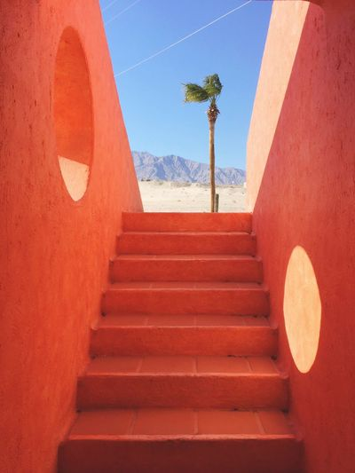 Tree Palm Mountains Desert Desert Landscape Deserts Around The World Architecture Orange Orange Color Mexican Mexicanstyle Baja Baja California Mexico EyeEmNewHere Minimalist Architecture The Graphic City