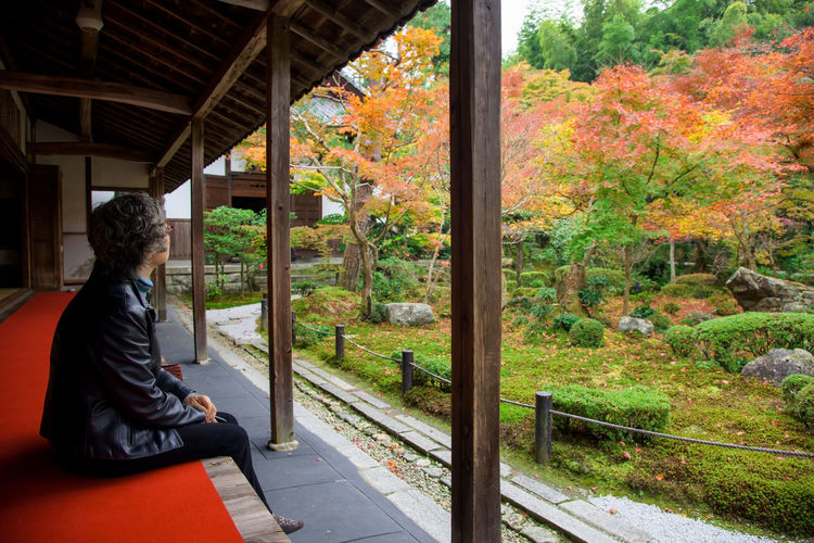 Side view of man sitting by trees during autumn