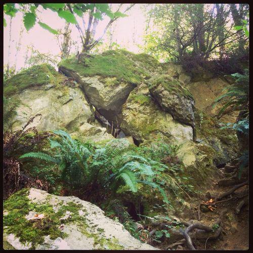 Impressive rock slide