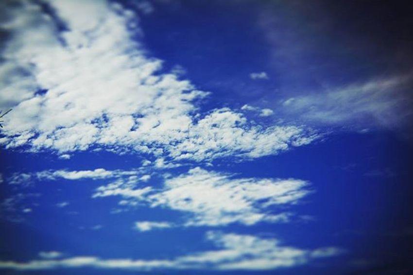ソラ 晴れ間 雨上がり 雨上がりの空 そら部 そらふぉと 空 Sky くも 雲