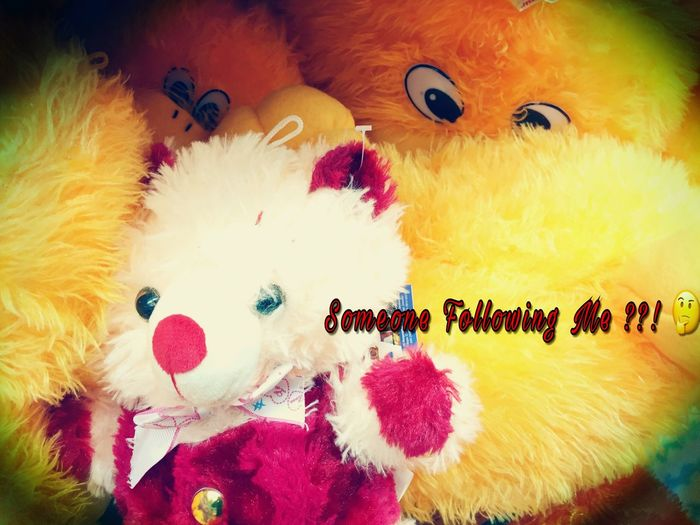 Indoors  Toy Art And Craft Full Frame Multi Colored Teddy Bear Close-up Creativity Domestic Animals Brown Decoration No People Softness
