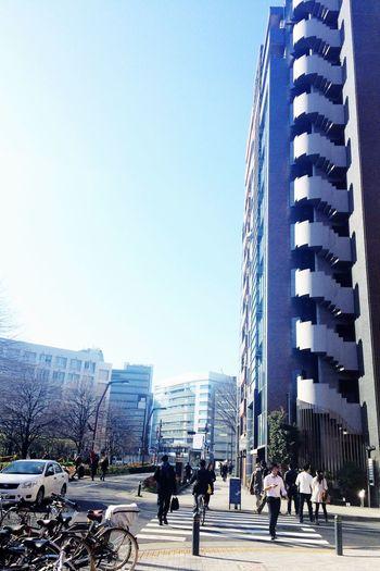 雲ひとつない青空。本当に散歩日和♪思わずアイスコーヒー片手にちょっとだけ散歩してきました♪ OneCam EyeEm Coffee Shinjuku