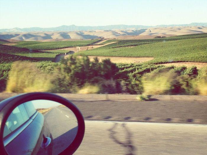 Road Trippin' SB To SFO