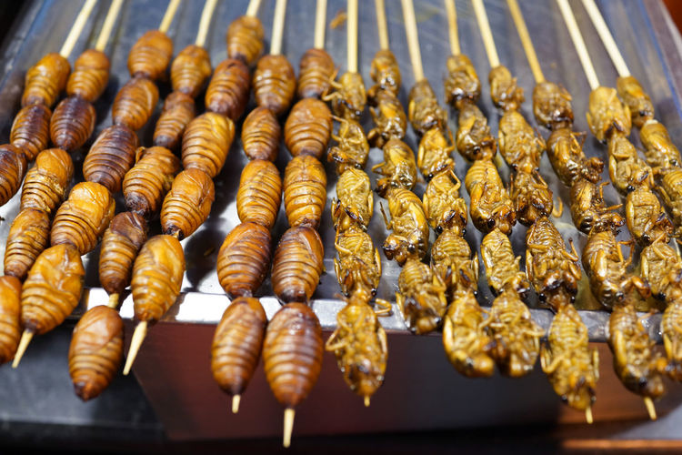 Close-Up Of Fried Animals On Skewers