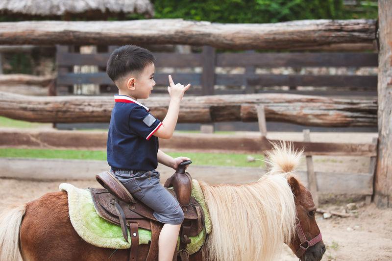 Cute asian child boy riding a pony in the farm with fun Asian  Farm Field Fun Horses Pony Travel Trip Zoo Animal Boys Child Countryside Domestic Animals Enjoy Horse Horseback Jockey Kid Mammal One Person Pets Play Riding Smiling