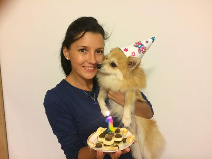 happy b-day! Pets Friendship Portrait Smiling Happiness Dog Birthday Looking At Camera Birthday Cake Cheerful Birthday Candles Pet Owner Candle Lap Dog