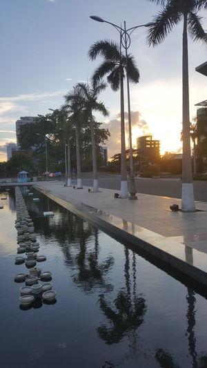 Sunset in the city ... Da Nang, Vietnam Sky Sunset Outdoors Đà Nẵng Vietnam Palm Trees Fountains Vertical