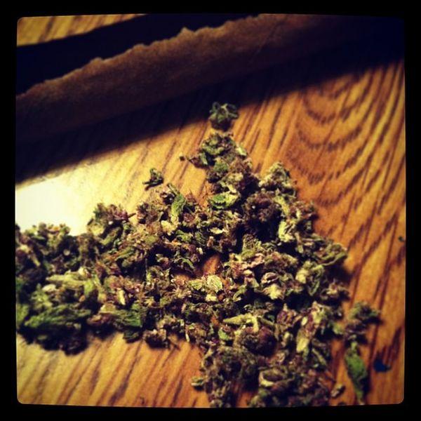 Had to call me good weed man. Came through at 1 sumn. ???? Purple Trainwreck Bang