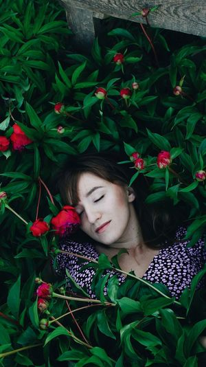 High angle view of woman sleeping on flowering plants