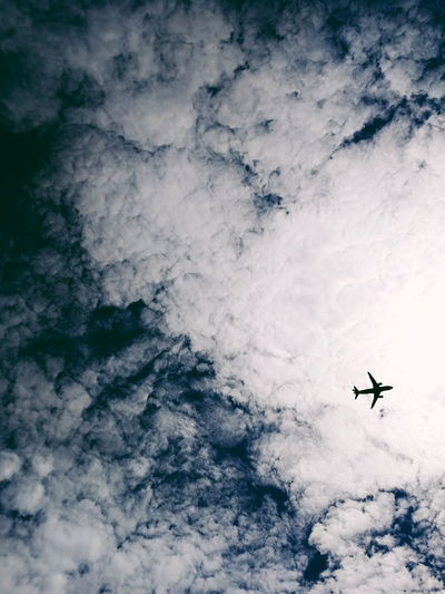 .nostalgia Mobilephotography Huawei P10 Berlin Sky Blue Airshow Vapor Trail Airplane Flying Fighter Plane Air Vehicle Mid-air Aerospace Industry Adventure Sky Aeroplane Aircraft My Best Travel Photo