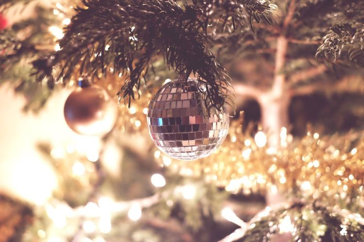 Merry Christmas Christmas Hanging Sphere Christmas Decoration Christmas Ornament Close-up Christmas Tree Christmas Lights Indoors  Christmas Bauble Illuminated Tree