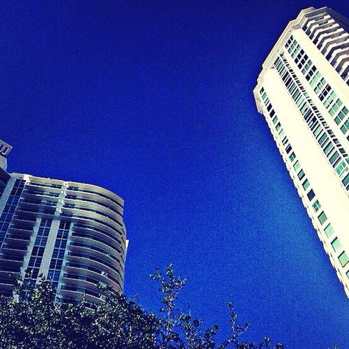Look Up And Thrive Urban Geometry Las Olas Blvd