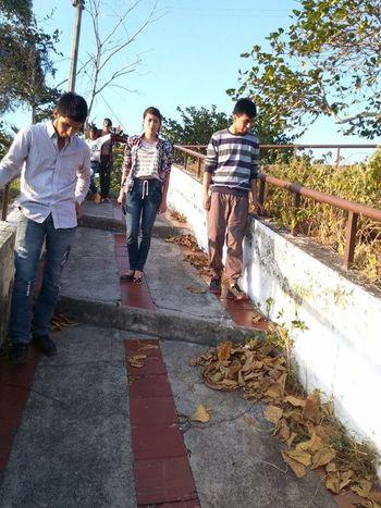 Caminando Hojas Secas Baranda