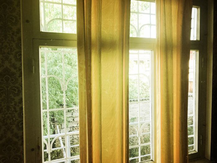 Window Indoors  Day Curtain No People Home Interior Drapes  Tree Close-up Architecture Photography Themes The Week Of Eyeem EyeEm Best Shots EyeEm Gallery EyeEmBestPics EyeEm The Week On EyeEm