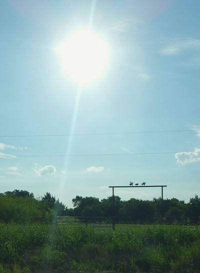 Sky Sunny Day Sunrays Farms Countryside Gates Naturallensflare