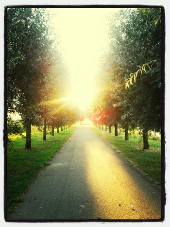 Walking Around Enjoying The Sun