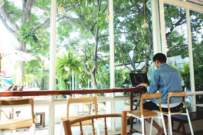 Hipster Sitting Chair One Man Only Table One Person Only Men Rear View Adults Only Technology Wireless Technology People Adult Day Laptop Cafe Startup Bangkok Thailand. Workspace Tree Indoors  Men Relaxation Nature Businessman