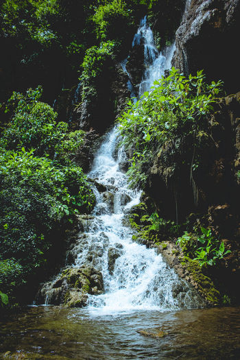 Paradise in my Regency EyeEmNewHere Green Color Water Outdoors No People Backgrounds Nature Day Beauty In Nature Tree Close-up Freshness Rate Rate Me Likes Likeforlike Like4like Happy Beauty Beauty In Nature Photography Love Waterfall Nature Happiness