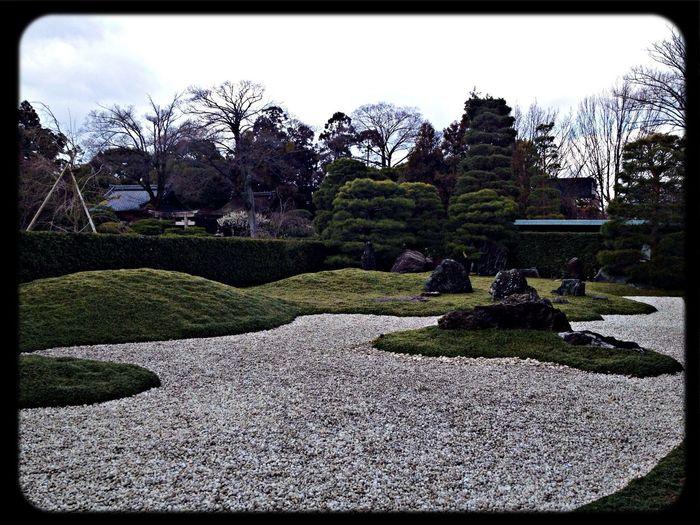 城南宮 神苑「城南離宮の庭」 Garden The Purist (no Edit, No Filter) Taking Photos IPhoneography