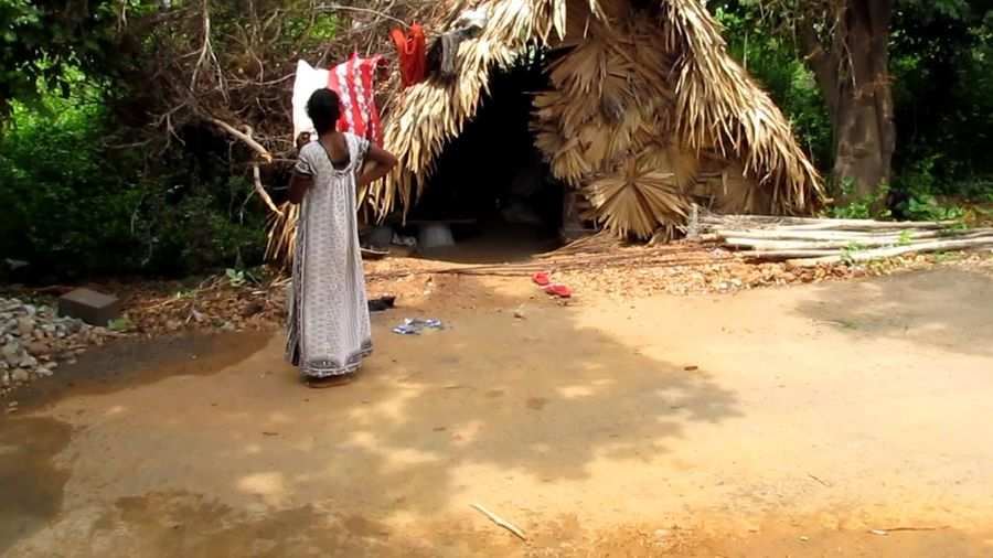 A WOMAN NEAR A HUT Hut Young Adult Poor Woman Poverty Standing Alone Woman Tree Sand Thatched Roof Rear View