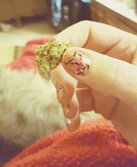nugget 420life