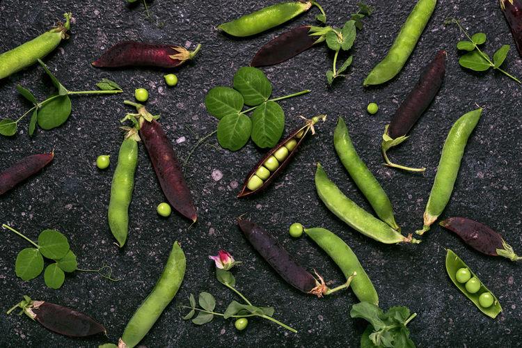 Harvest of