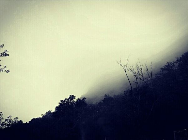 Showcase July Fogg Foggy Day On The Way On The Road World Indian Culture  Eyeem Philippines Adventure Club Getty Images Beautiful Nature Indiannature Rainyclick Above The Clouds Silence Clicked By Redmi 2 No Dslr No Problem Fan Of Huawei P9